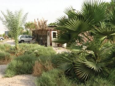 מנעולה של ארץ ישראל | חוות בית חוגלה  בחזרה ליהדות