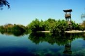 השמורה הנמוכה בעולם, עינות צוקים [עין פשחה] שמורת טבע