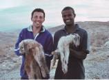 Природные пастбища, «Сде бар», животноводческое хозяйство, сельскохозяйственная молодежная ферма