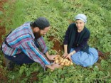 טובה הארץ מאד מאד, הארץ הטובה (משק צימרמן) משק חקלאי, איתמר