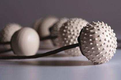 Анемоны Сигалит Брайер, керамическая студия, Шани-Ливне